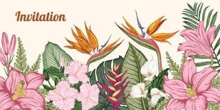 Bouquet des fleurs tropicales Illustration de vecteur illustration libre de droits