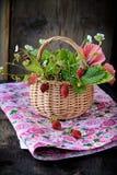 Bouquet des fraisiers communs dans un panier Photographie stock libre de droits