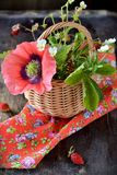 Bouquet des fraisiers communs dans un panier Photos libres de droits
