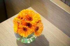 Bouquet des gerberas oranges images libres de droits