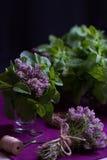 Bouquet des herbes parfumées Menthe et thym Le style de l'obscurité Photographie stock