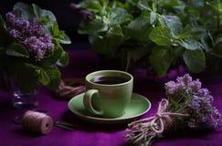 Bouquet des herbes parfumées Menthe et thym Le style de l'obscurité Image libre de droits