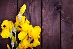 Bouquet des iris jaunes Images stock