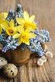 Bouquet des jonquilles et de la jacinthe de raisin bleue de muscari images stock