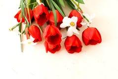 Bouquet des jonquilles et des tulipes sur un fond blanc en bois Photographie stock