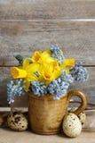 Bouquet des jonquilles et du muscari bleu (jacinthe de raisin) photographie stock libre de droits