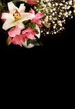 Bouquet des lis Photo stock