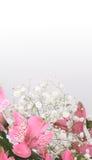 Bouquet des lis Images libres de droits