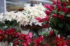 Bouquet des lis dans un vase en verre avec le panier en osier dans un fleuriste Photographie stock libre de droits