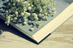 Bouquet des lis de la vallée sur le livre ouvert Photo libre de droits