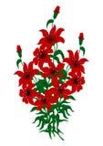 Bouquet des lis rouges Illustration de Vecteur