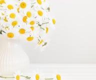 Bouquet des marguerites images libres de droits