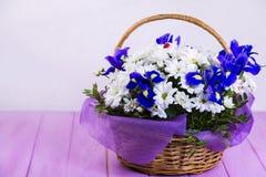 Bouquet des marguerites blanches et du coq bleu Photographie stock