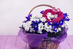 Bouquet des marguerites blanches et du coq bleu Image libre de droits