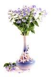 Bouquet des myosotis des marais Photographie stock