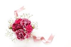 Bouquet des oeillets Images libres de droits