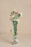 Bouquet des oeillets Images stock