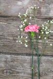 Bouquet des oeillets Photographie stock libre de droits