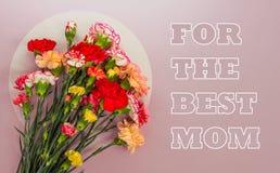 Bouquet des oeillets sur un fond rose avec un espace de copie photos stock