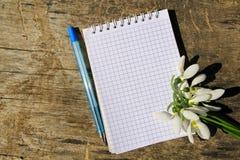 Bouquet des perce-neige blancs avec le bloc-notes et le stylo vides Images libres de droits