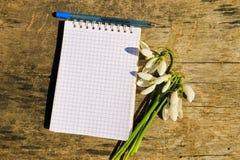 Bouquet des perce-neige blancs avec le bloc-notes et le stylo vides sur le fond en bois Photographie stock libre de droits