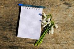 Bouquet des perce-neige blancs avec le bloc-notes et le stylo vides sur le fond en bois Photo libre de droits