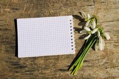 Bouquet des perce-neige blancs avec le bloc-notes vide sur le backgrou en bois Image libre de droits