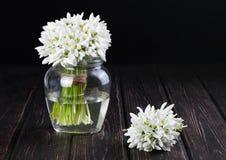 Bouquet des perce-neige dans le vase Photos libres de droits