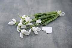 Bouquet des perce-neige sur le fond en pierre gris avec l'espace f de copie Images stock