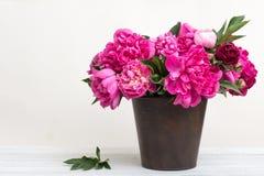 Bouquet des pivoines Photo libre de droits