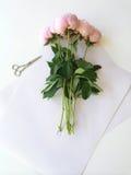 Bouquet des pivoines Photographie stock libre de droits