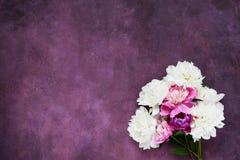 Bouquet des pivoines blanches et roses Configuration plate pour des invitations, félicitations Carte de voeux Copiez l'espace, vu photographie stock libre de droits