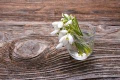 Bouquet des premiers perce-neige de fleurs de beau ressort Photos libres de droits