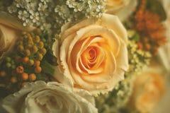 Bouquet des roses Images stock