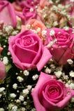 Bouquet des roses Image stock