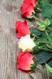 Bouquet des roses Photo libre de droits