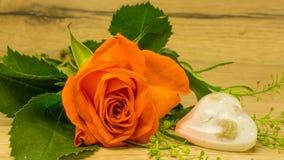 Bouquet des roses Photos stock