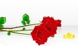 Bouquet des roses avec des boucles de mariage Illustration de vecteur Image libre de droits