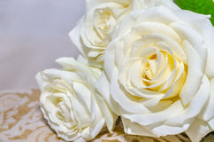 Bouquet des roses blanches Photo stock