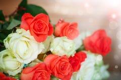 Bouquet des roses de floraison Image stock