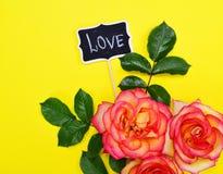 Bouquet des roses de floraison Image libre de droits
