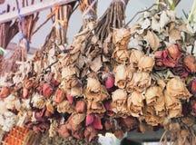 Bouquet des roses de mort sèches Images libres de droits