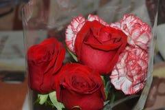Bouquet des roses et des oeillets photographie stock libre de droits