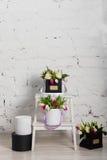 Bouquet des roses et des tulipes dans un boîte-cadeau Photos libres de droits