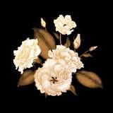 Bouquet des roses exotiques illustration stock