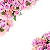 Bouquet des roses fraîches Images libres de droits
