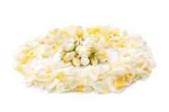 Bouquet des roses jaunes et des pétales de rose Photo libre de droits