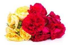 Bouquet des roses jaunes et rouges photos libres de droits