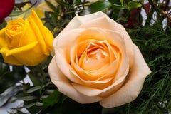 Bouquet des roses multicolores assorties Photos libres de droits