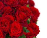 Bouquet des roses rouge foncé dans la fin de vase Images libres de droits